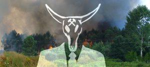 Plataforma pola sostibilidade do rural galego ou cabalo de Troia contra o rural?