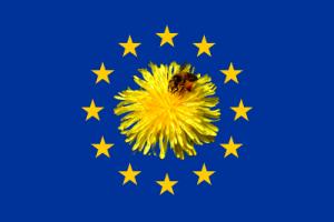 Véspera de Nada apoia as presións sobre o Ministerio Español contra os praguicidas tóxicos para as abellas